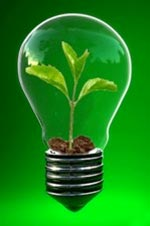 plant growing inside a lightbulb representing sustainability